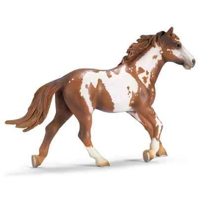 Video schleich-13616-Etalon Pinto