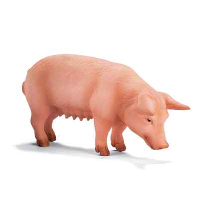 Video schleich-13288-Porc debout